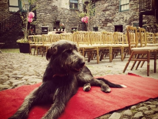 Wedding Photo Gallery at Ballintaggart House, Dingle
